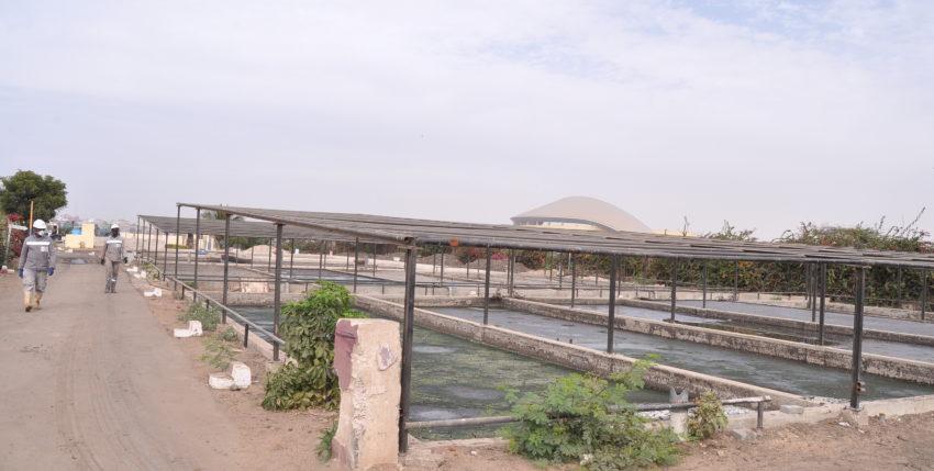 Délégation de service public (affermage) portant sur la gestion des stations de traitement des boues de vidange